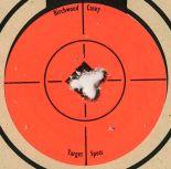 606px-Target_223_Savage_10FP_5_shot_closeup