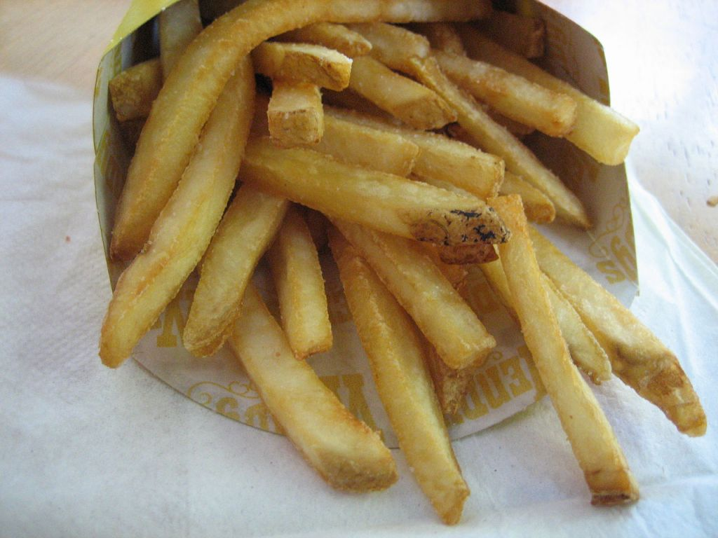 Natural_cut_fries_with_sea_salt_(5219470667)